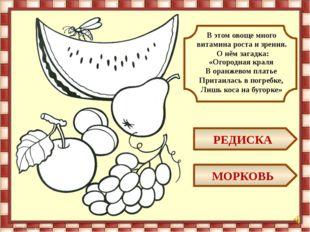 КАРТОФЕЛЬ РЕПА Какой овощ называют вторым хлебом?