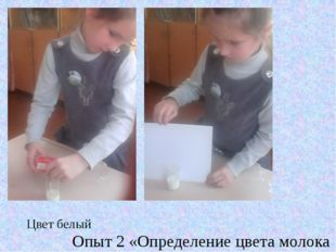 Цвет белый Опыт 2 «Определение цвета молока