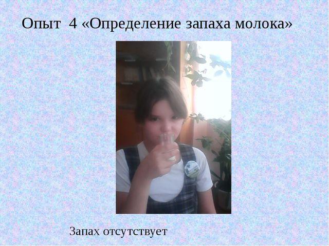 Запах отсутствует Опыт 4 «Определение запаха молока»