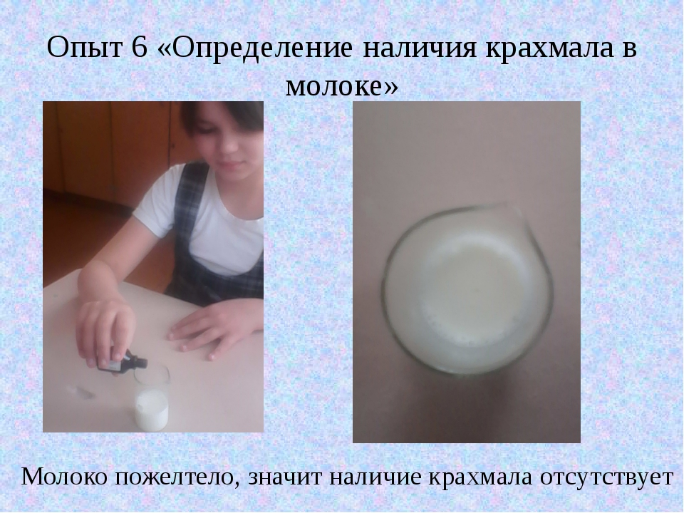 Опыт 6 «Определение наличия крахмала в молоке» Молоко пожелтело, значит налич...