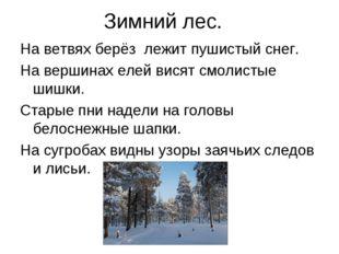 Зимний лес. На ветвях берёз лежит пушистый снег. На вершинах елей висят смоли