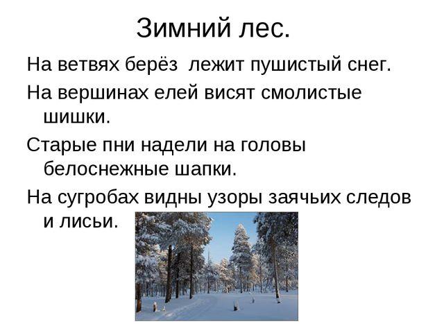 Зимний лес. На ветвях берёз лежит пушистый снег. На вершинах елей висят смоли...