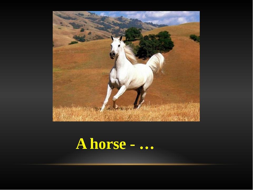 A horse - …