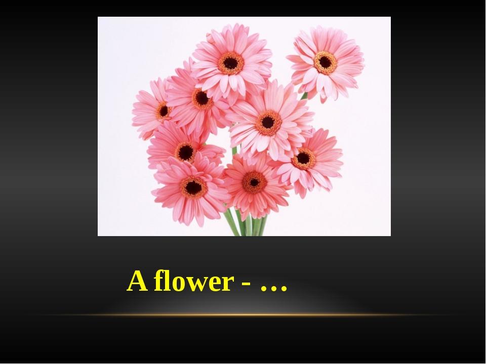 A flower - …