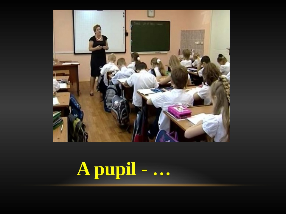 A pupil - …
