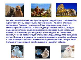В Риме боевые собаки выступали в роли гладиаторов, соперничая в одиночку с оч