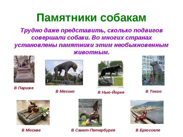 Памятники собакам Трудно даже представить, сколько подвигов совершали собаки....