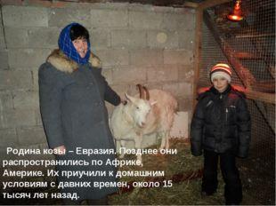 Родина козы – Евразия. Позднее они распространились по Африке, Америке. Их п