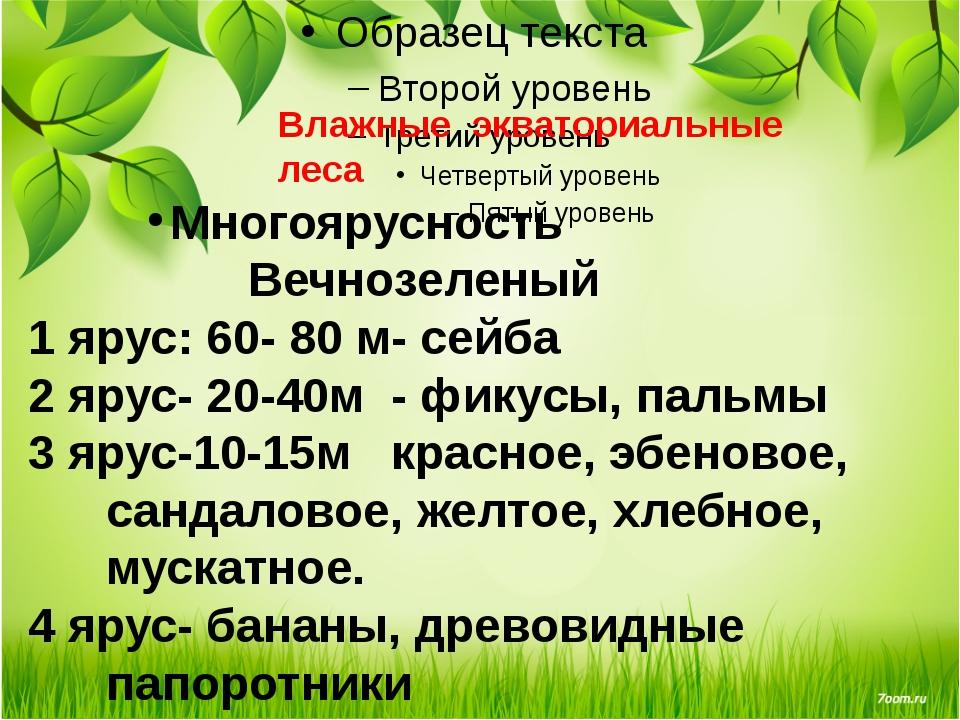 Влажные экваториальные леса Многоярусность Вечнозеленый 1 ярус: 60- 80 м- се...