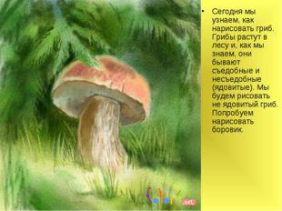 Сегодня мы узнаем, как нарисовать гриб. Грибы растут в лесу и, как мы знаем,