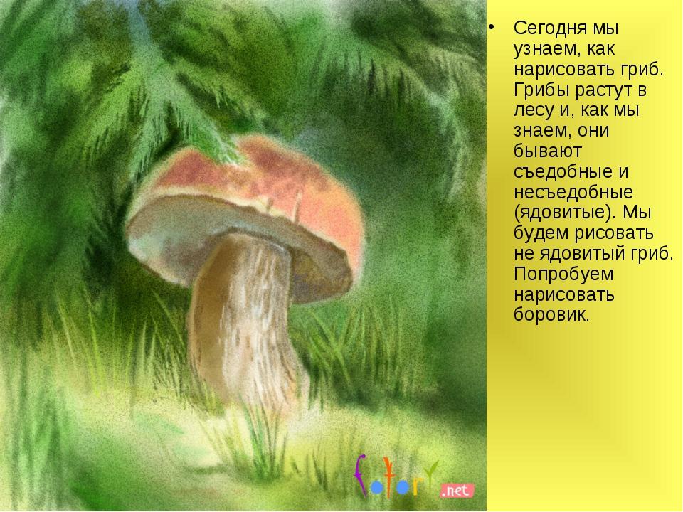 Сегодня мы узнаем, как нарисовать гриб. Грибы растут в лесу и, как мы знаем,...