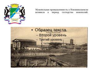 Мукомольная промышленность в Новониколаевске возникла в период господства мон