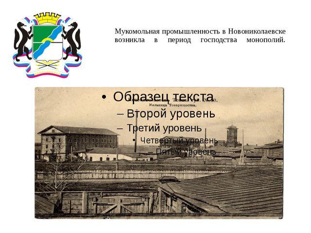 Мукомольная промышленность в Новониколаевске возникла в период господства мон...