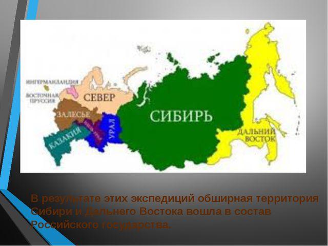 В результате этих экспедиций обширная территория Сибири и Дальнего Востока во...