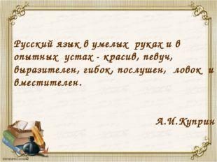 Русский язык в умелых руках и в опытных устах - красив, певуч, выразителен, г