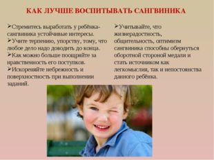 КАК ЛУЧШЕ ВОСПИТЫВАТЬ САНГВИНИКА Стремитесь выработать у ребёнка-сангвиника у