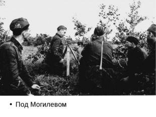 Под Могилевом
