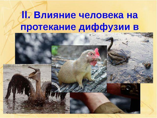 II. Влияние человека на протекание диффузии в природе