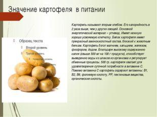 Значение картофеля в питании Картофель называют вторым хлебом. Его калорийнос