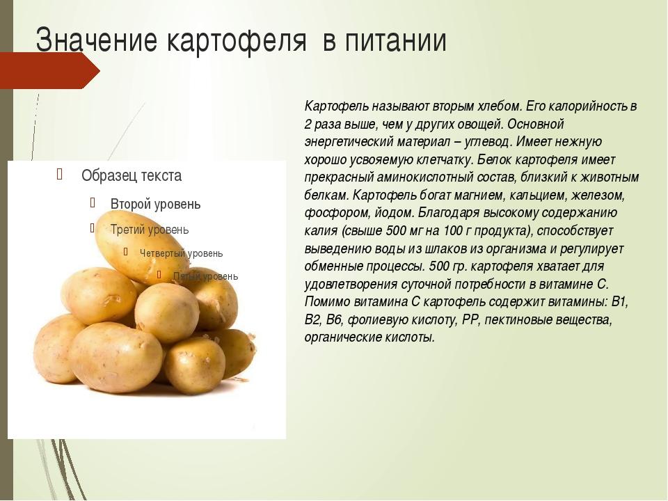 Значение картофеля в питании Картофель называют вторым хлебом. Его калорийнос...