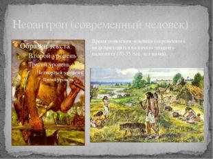 Неоантроп (современный человек) Время появления человека современного вида пр