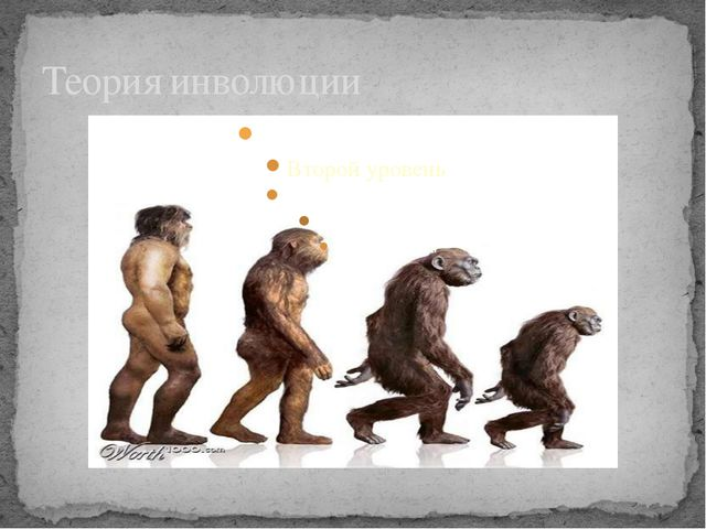 Теория инволюции