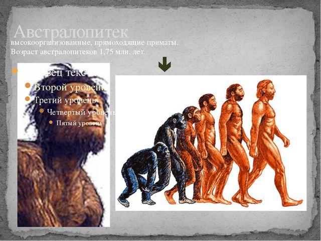 Австралопитек высокоорганизованные, прямоходящие приматы. Возраст австралопит...