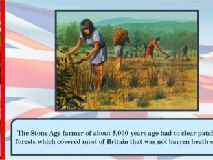 The Stone Age farmer of about 5,000 years ago had to clear patches in the for