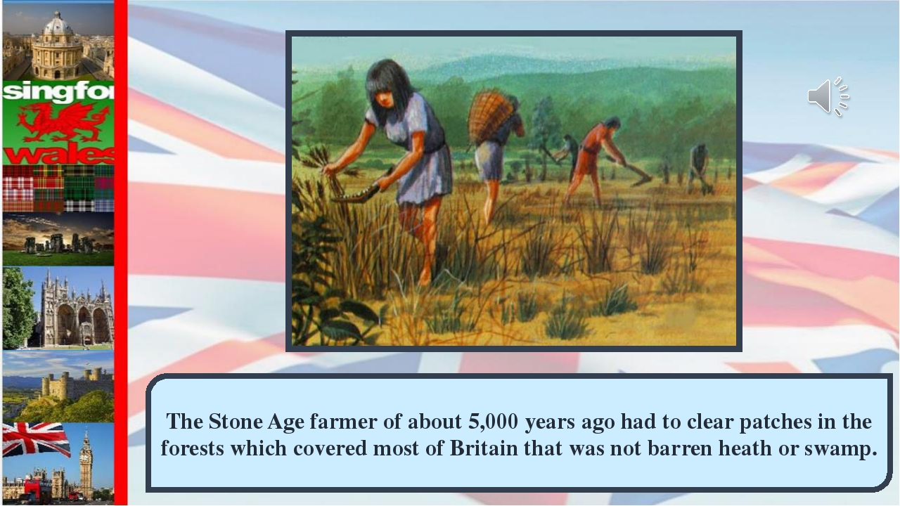 The Stone Age farmer of about 5,000 years ago had to clear patches in the for...