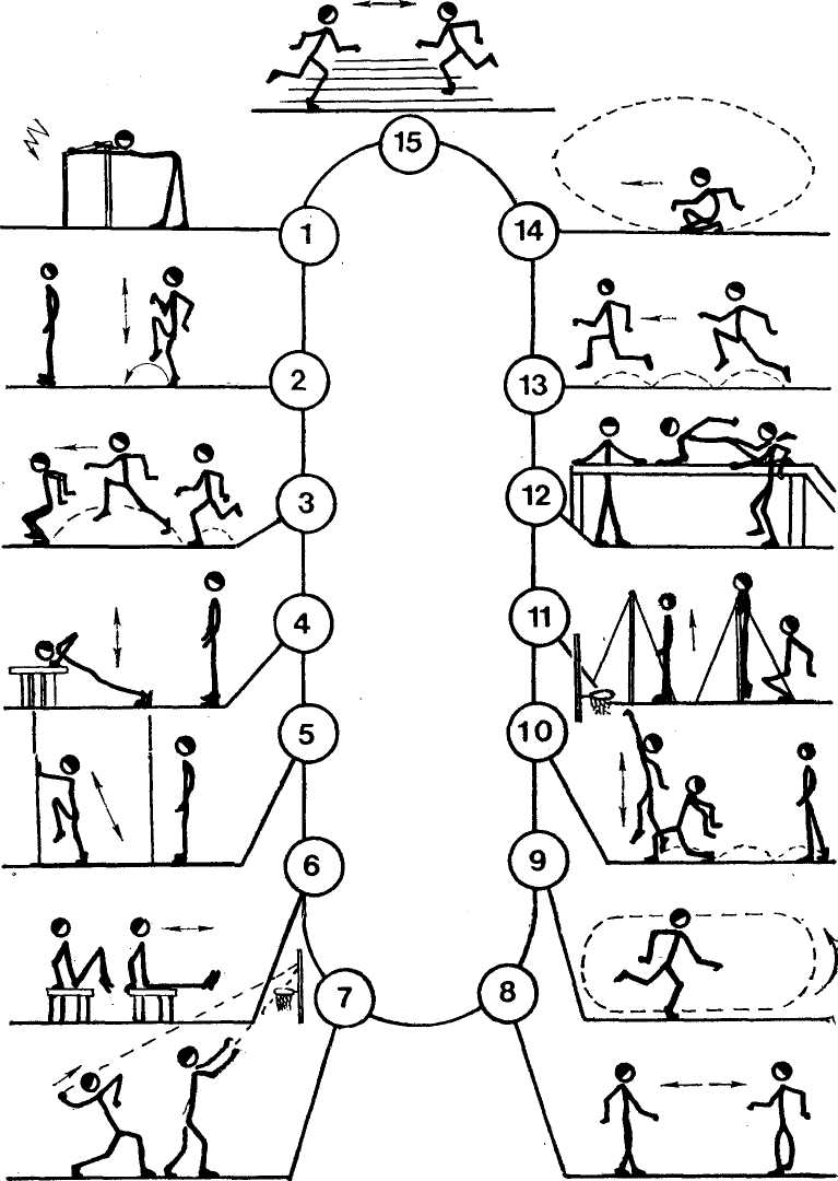 схема упражнений для лыжников на лето