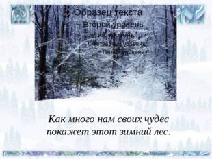 Как много нам своих чудес покажет этот зимний лес.