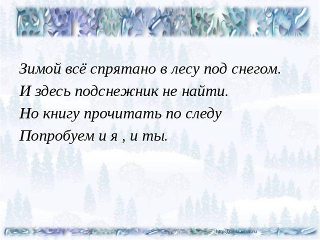 Зимой всё спрятано в лесу под снегом. И здесь подснежник не найти. Но книгу...