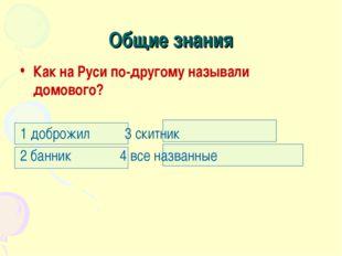 Общие знания Как на Руси по-другому называли домового? 1 доброжил 3 скитник 2