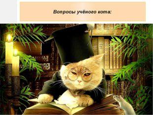 Вопросы учёного кота: