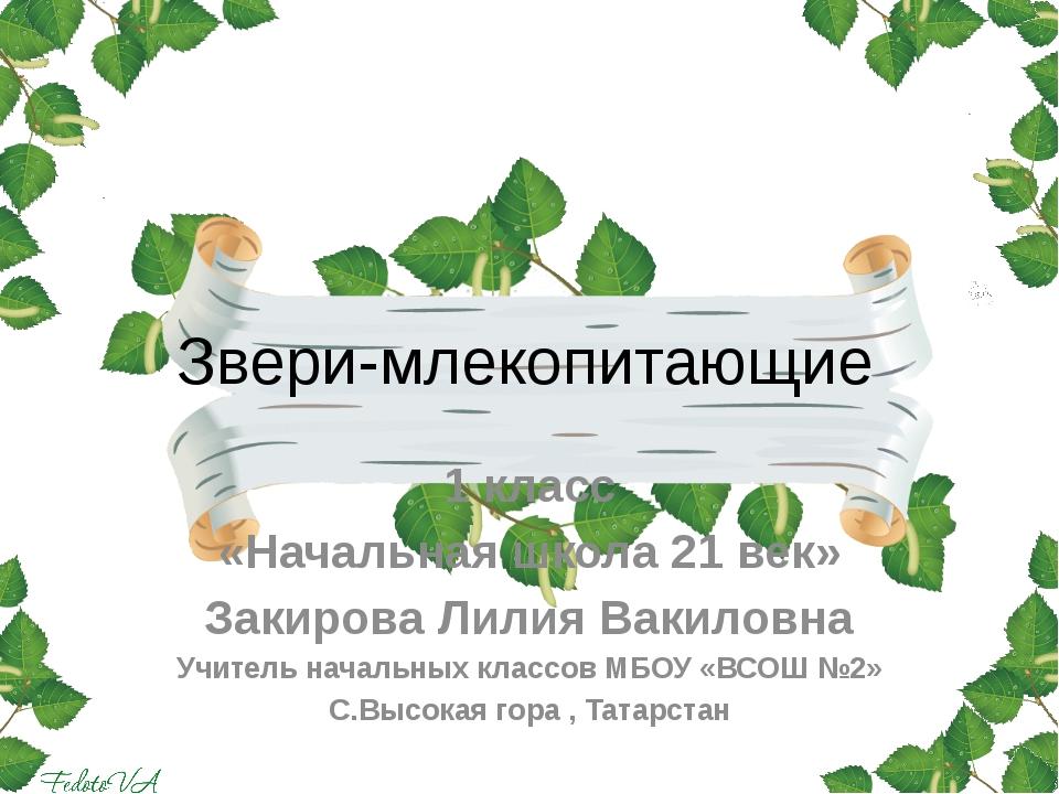 Звери-млекопитающие 1 класс «Начальная школа 21 век» Закирова Лилия Вакиловна...