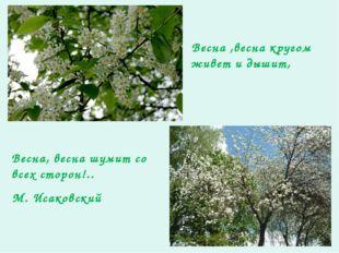 Весна ,весна кругом живет и дышит, Весна, весна шумит со всех сторон!.. М. Ис
