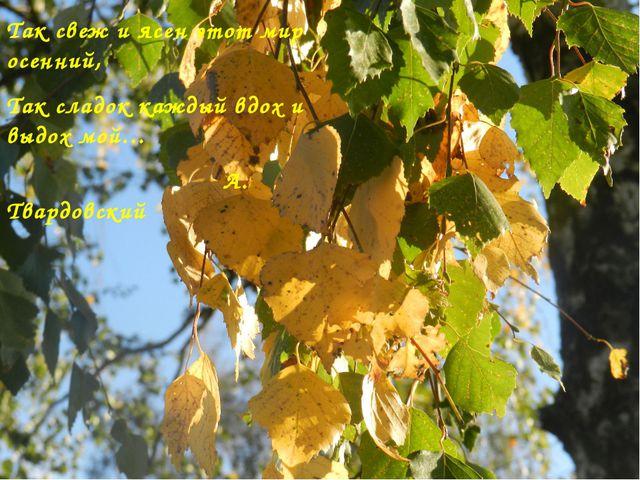 Так свеж и ясен этот мир осенний, Так сладок каждый вдох и выдох мой… А. Твар...