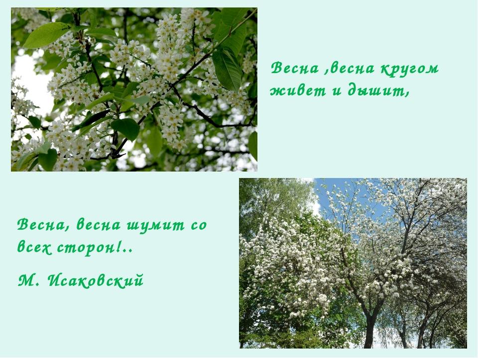 Весна ,весна кругом живет и дышит, Весна, весна шумит со всех сторон!.. М. Ис...