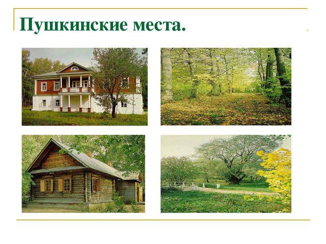 Пушкинские места.