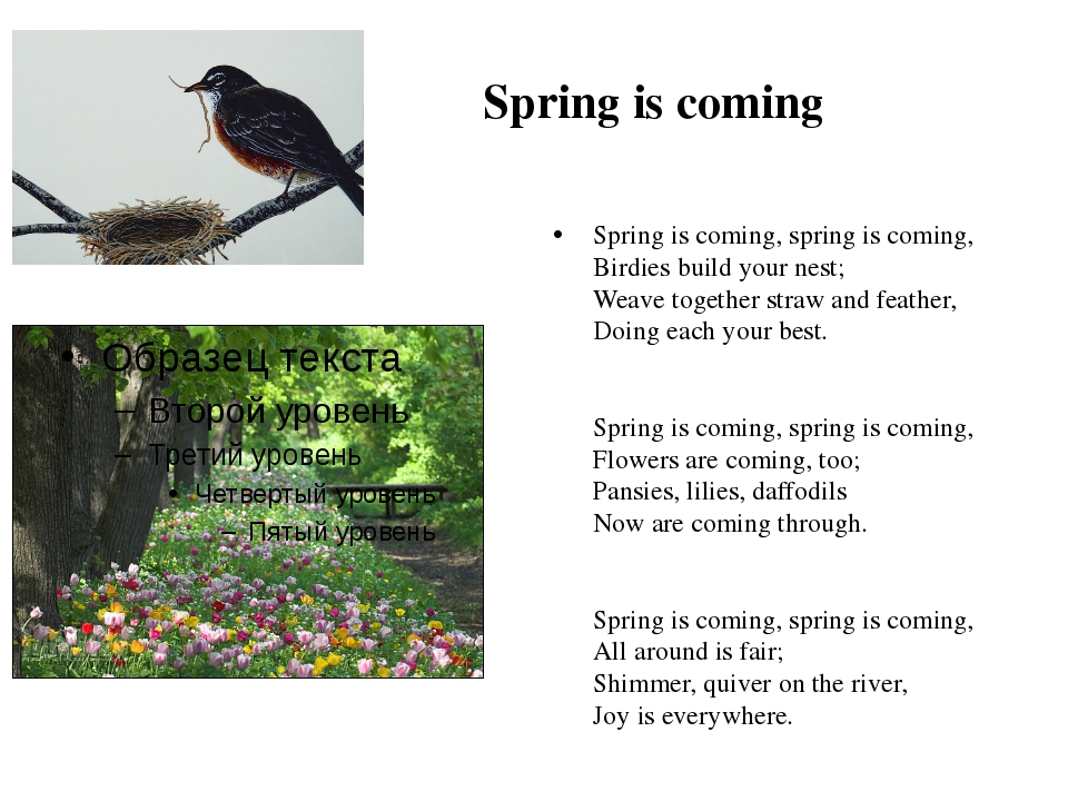 Spring is coming Spring is coming, spring is coming, Birdies build your nest...