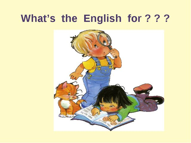 What's the English for ? ? ?