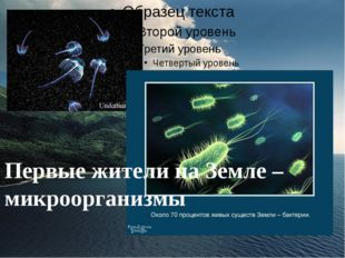 Первые жители на Земле – микроорганизмы