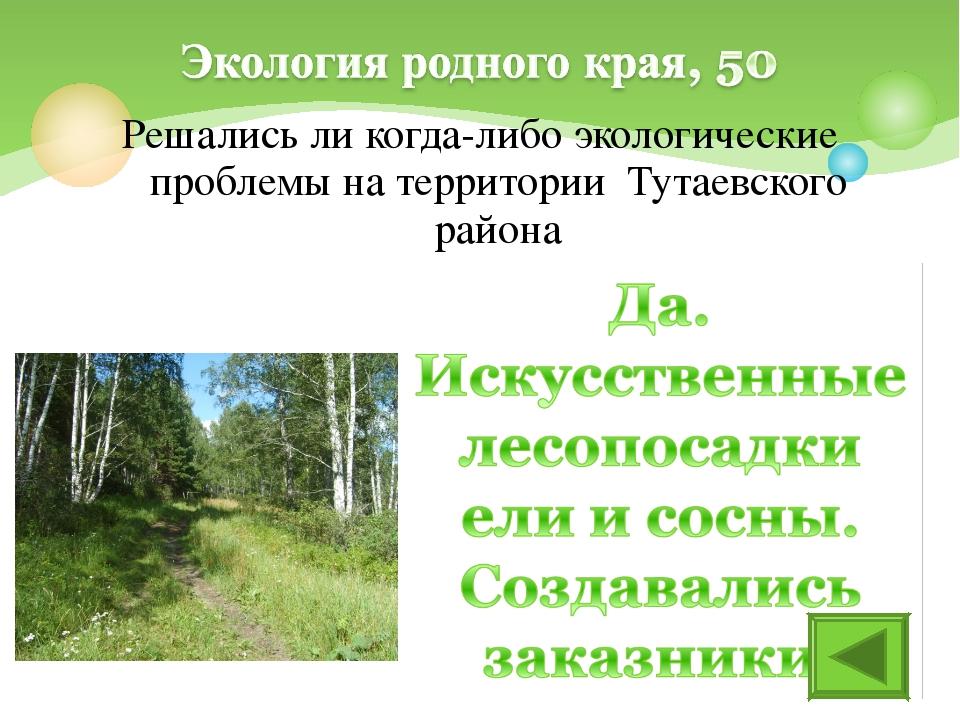 Решались ли когда-либо экологические проблемы на территории Тутаевского района