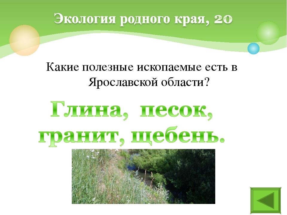 Какие полезные ископаемые есть в Ярославской области?