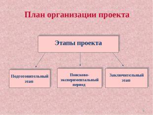 * План организации проекта Этапы проекта Подготовительный этап Поисково-экспе