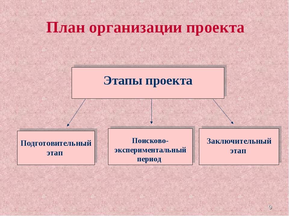 * План организации проекта Этапы проекта Подготовительный этап Поисково-экспе...