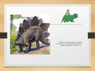 На хвосте стегозавра имелись 4 мощных заостренных костяных шипа. Длина шипов