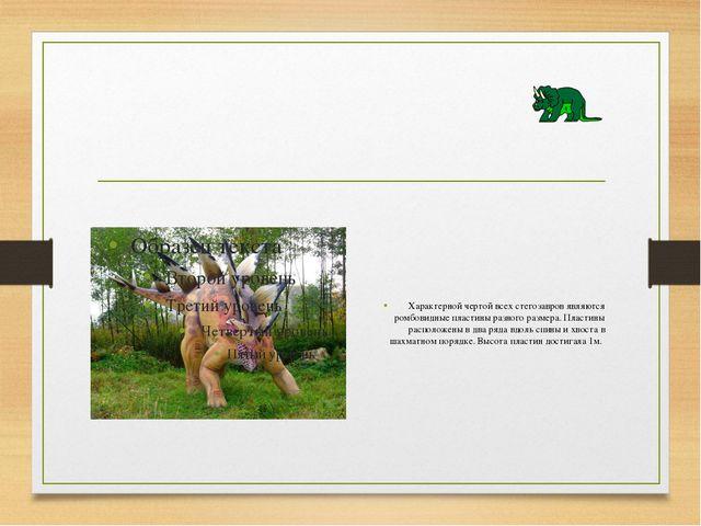 Характерной чертой всех стегозавров являются ромбовидные пластины разного ра...