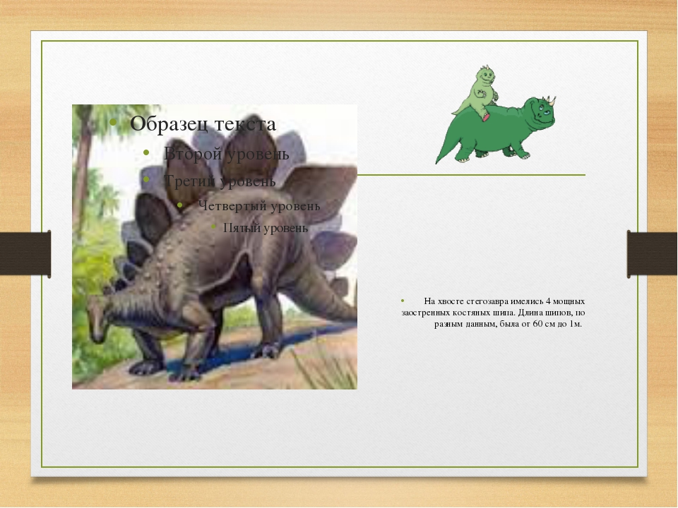 На хвосте стегозавра имелись 4 мощных заостренных костяных шипа. Длина шипов...