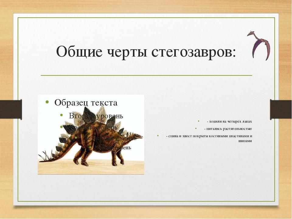 Общие черты стегозавров: - ходили на четырех лапах - питались растительностью...
